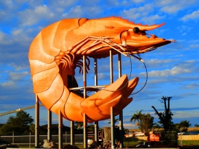 The Big Prawn of Ballina and the lesser known Smaller Pineapple