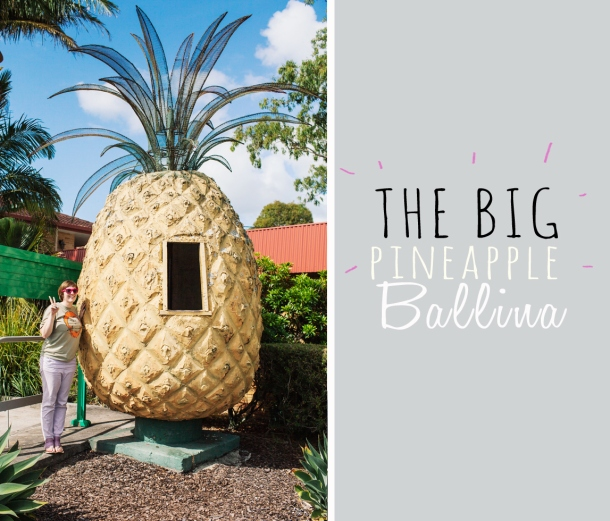The Big Pineapple of Ballina was rated11/25 stars for Big things Source: The Big Things of Oz