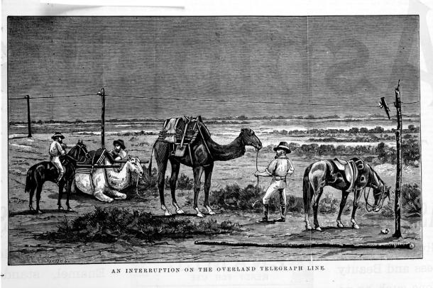 camel history01