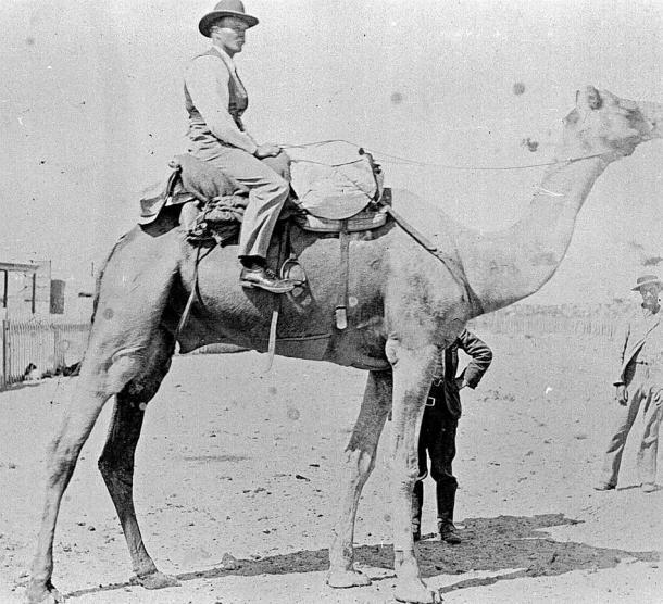 camel history02